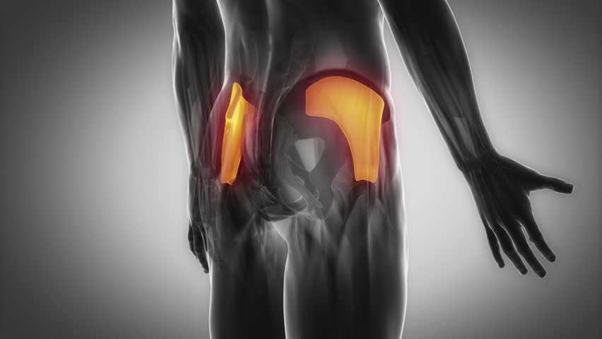 best exercise to activate your gluteus medius muscle