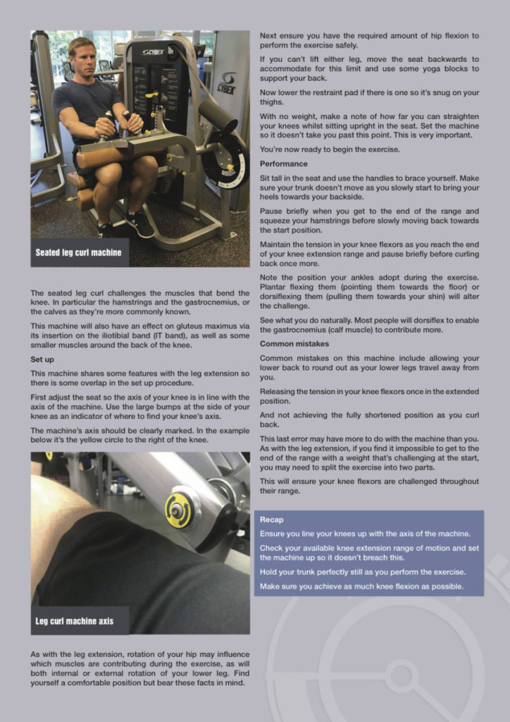 Lower Body Exercises sample page